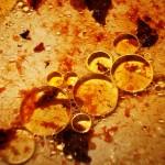 Aceite, por Remi Bouquet