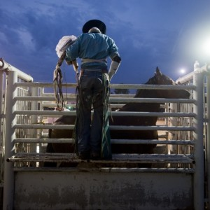 A lone bronc rider inspects his next ride at the Jacksonvile Rodeo in Texas.