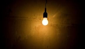 solitary bulb